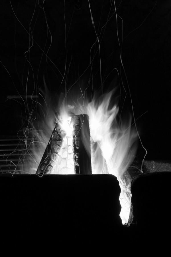 foc.jpg