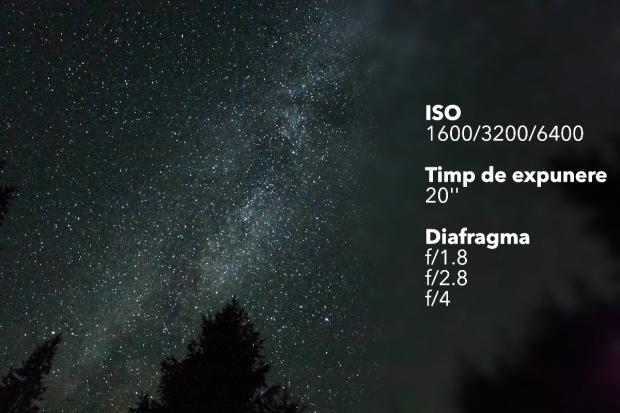IMG_3696.jpg